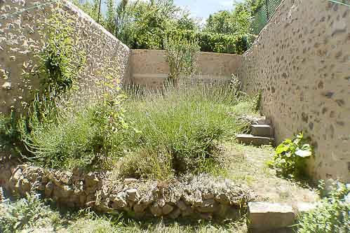 Gite les 4 chemins à Rians en Provence: le jardin et ses lavandes