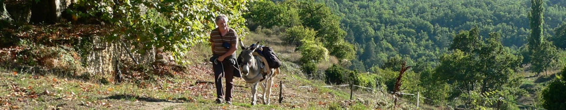 Randonnées dans la colline provençale
